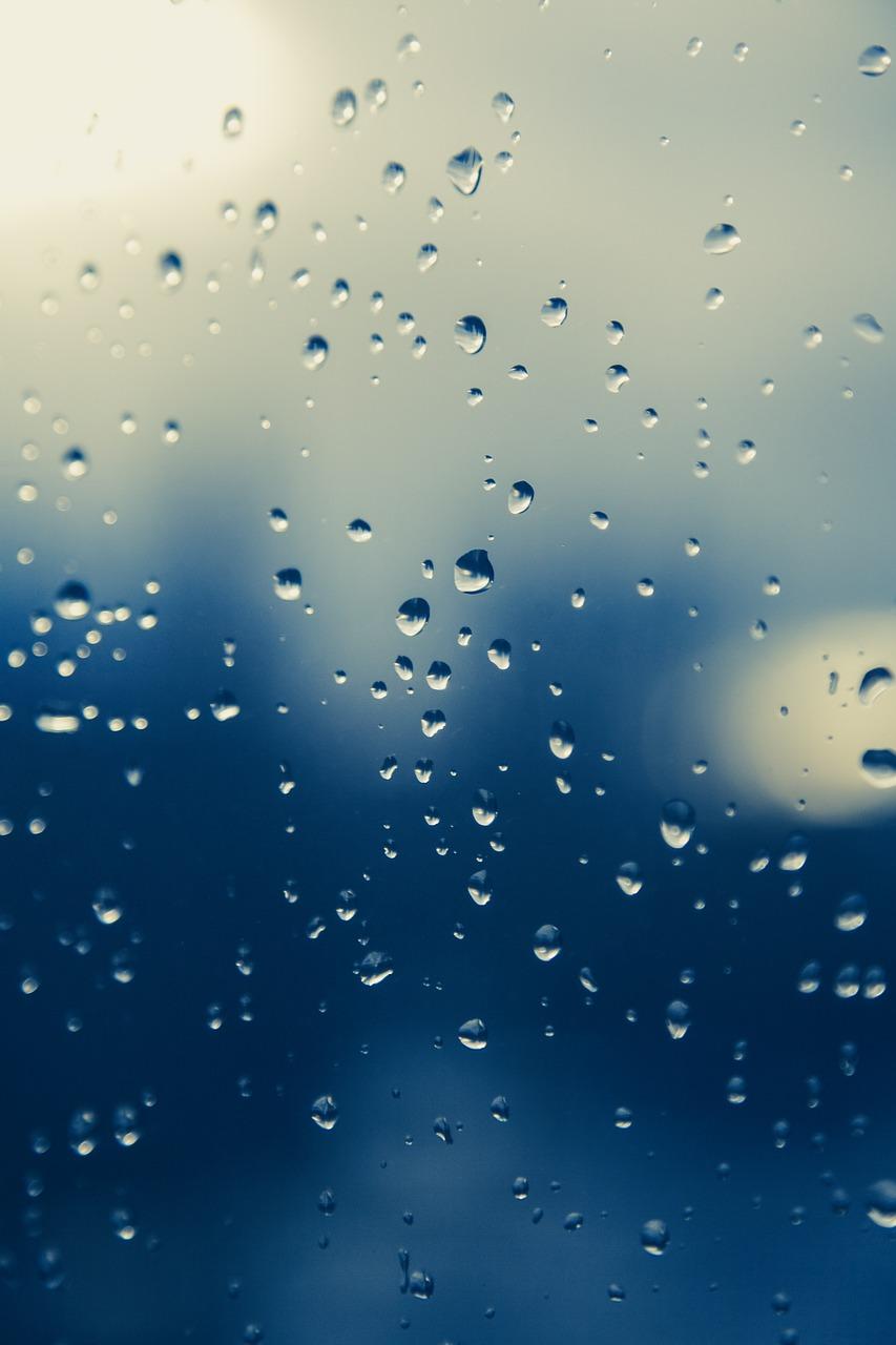 Absorbowanie wilgoci - uniknij deszczu kontenerowego